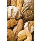 Variety of fresh bread